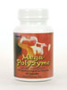Mega-Polyzyme